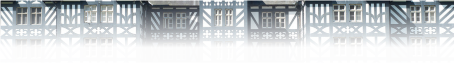 Detail of Gregynog Hall, adapted from a photograph by Aidan Byrne