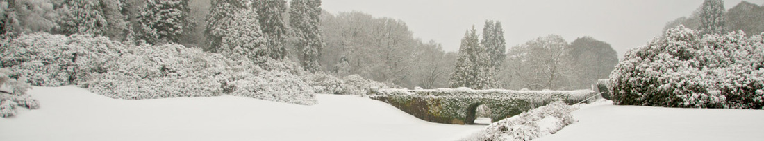 Image, taken from an original photograph © Aidan Byrne), showing the snow-covered grounds at Gregynog Hall in March 2013